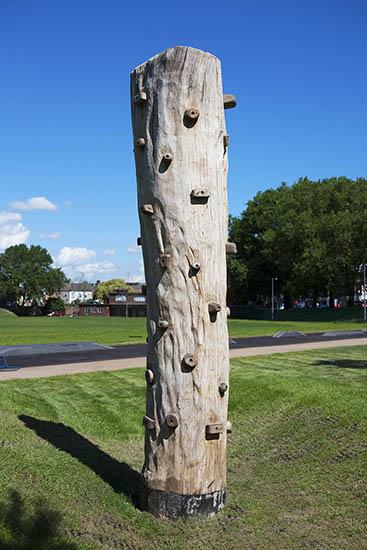 Drapers field climbing tree