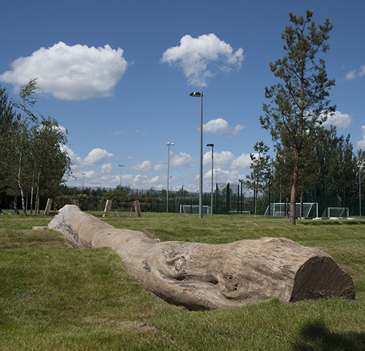 playground logs