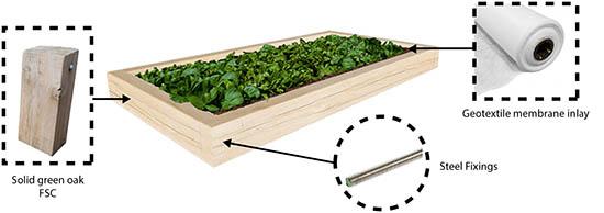 low oak plant spec
