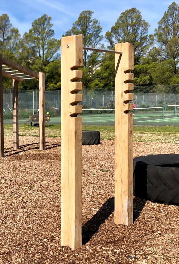 Squat and pull up station