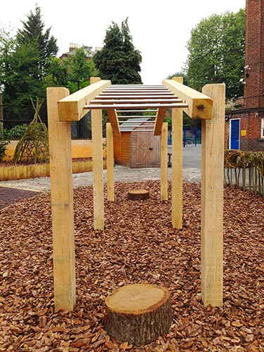 Monkey Bars Set for schools