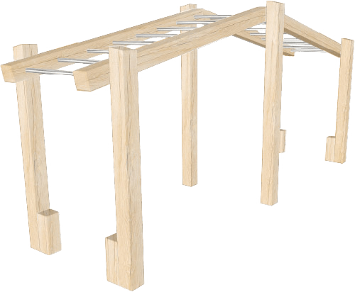 Monkey Bars for Adults