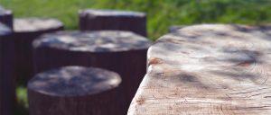 Wooden Stepping Stump Close up