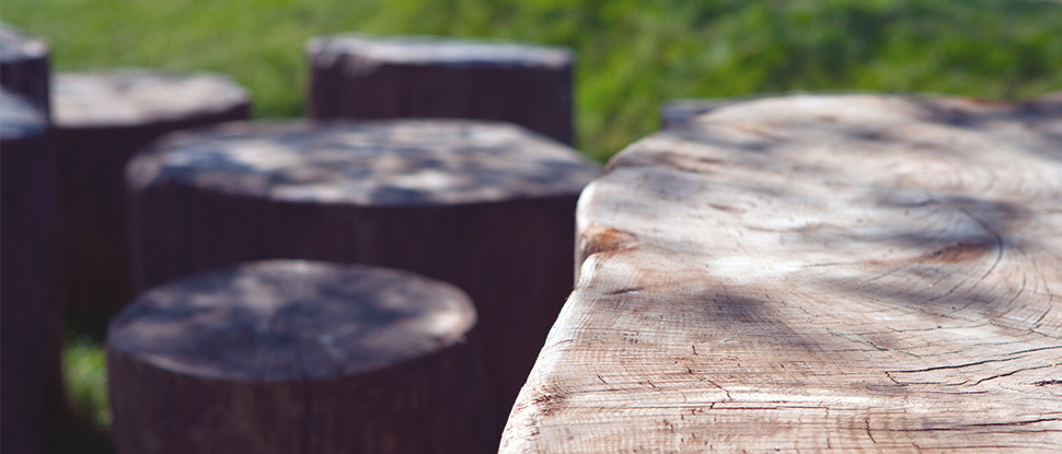 natural wooden playground features