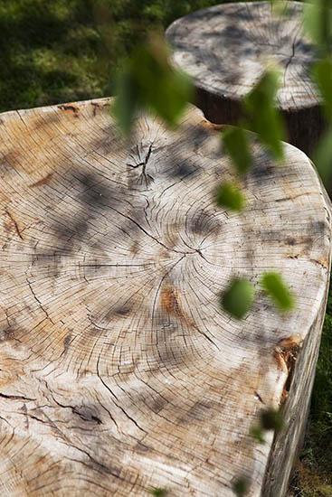 playground stepping stumps